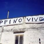 90 2004 scritta Peppino vive File0005