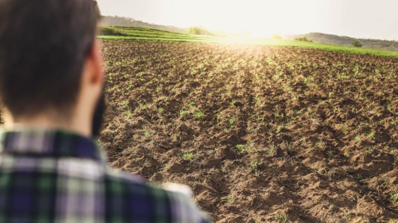 terreni-agricoli-vendita